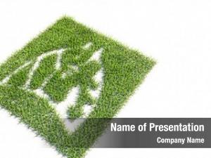Green concept conceptual summer lawn