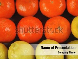 Composition lemon fresh raw
