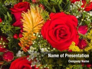 Floral design concept