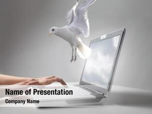 of a dove flying out of a laptop screen