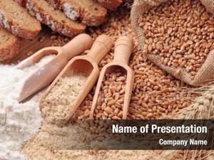 Whole wood spoons wheat grains,