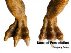 Animal monster toy dinosaur spooky