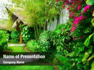 Design exotic landscaping