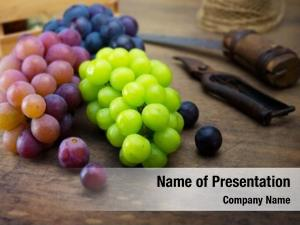 Grapes harvest season