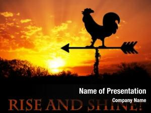 Vane rooster weather against sunrise,