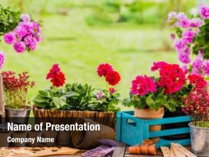 Terrace garden tools gardener equipment