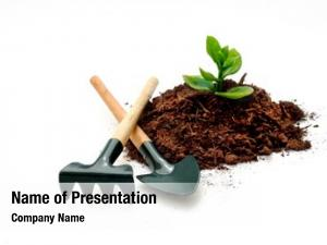 New cultivation plant, idea concept