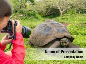 Tourist wildlife photographer galapagos islands