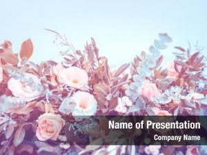 Decoration, amazing floral beautiful natural