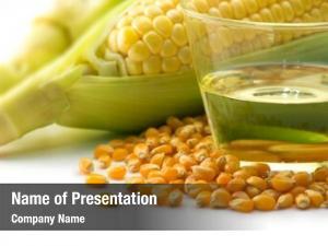 Corn raw corn, kernels corn