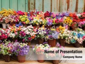 Artificial beautiful multicolored flowers