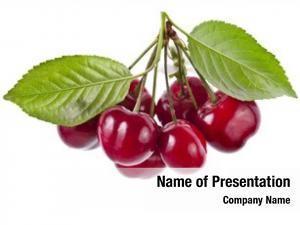White cherry fruit