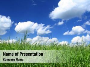 Grass rural landscape vegetation foreground