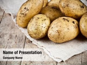 Dirty fresh organic potatoes heap