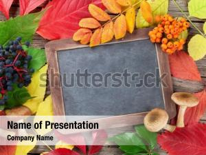 Autumn chalkboard with fruits