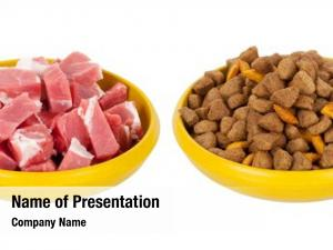 Dog natural meat food dry