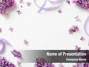 Beautiful decorative frame purple lilac