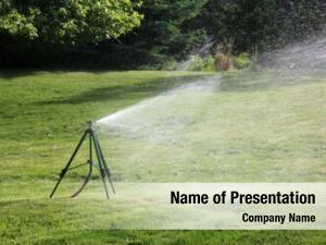 Sprinkler outdoor lawn watering green