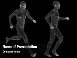Human concept conceptual anatomy mesh