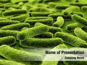 3d of a bacteria