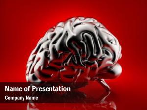 Brain rendered human anatomy