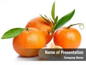 Green ripe tangerines leaf cut