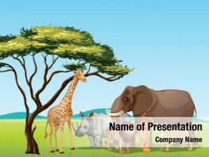Animals illustration african savannah