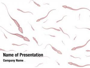 Swimming illustration sperm around white