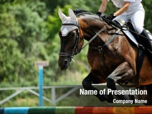 Jockeys, horse theme: horse races,