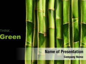 Black bamboo shoots