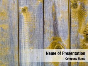 Old peeling paint wooden rustic