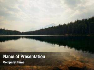 Forest herbert lake lake reflection