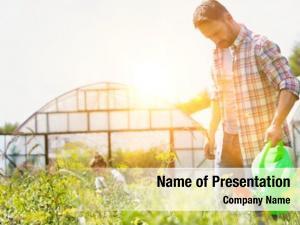 Watering male farmer plants farm