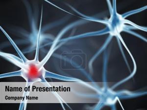 3d of neurons