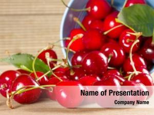 Bucket ripe cherries