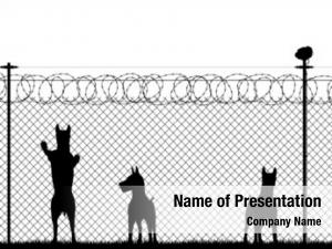 Guard illustrated silhouette dogs behind