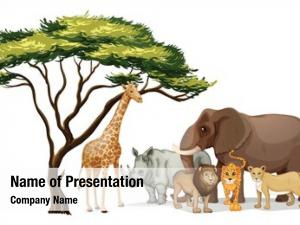 African illustration group animals