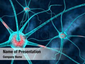 Neurons   3d