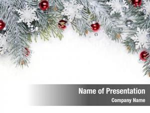 Fir christmas decoration branch, christmas