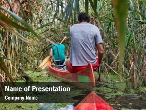 Overgrown canoeing wild passage reed