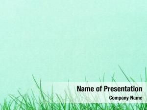 Blank green paper green grass