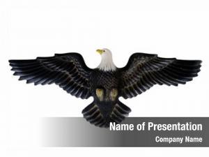 Symbol bald eagle