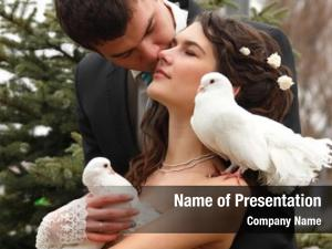 Wedding young attractive couple pigeons