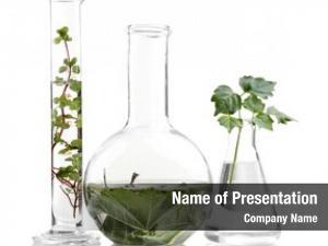 White plants flasks
