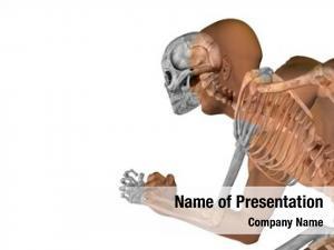 Conceptual anatomy concept human man
