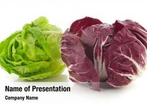 Lettuce red