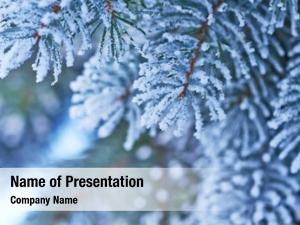 Tree snowfall christmas