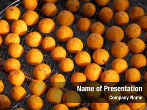 Under dried persimmon sun xinpu
