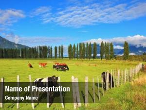 Chilean rural idyll patagonia