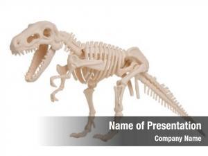 Model, dinosaur skeleton cut out